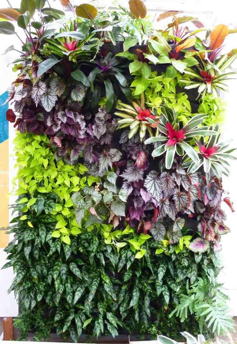 jardines diseño vertical acercamiento contraste colorido