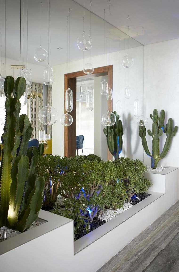 las plantas cactus lampara cuidados