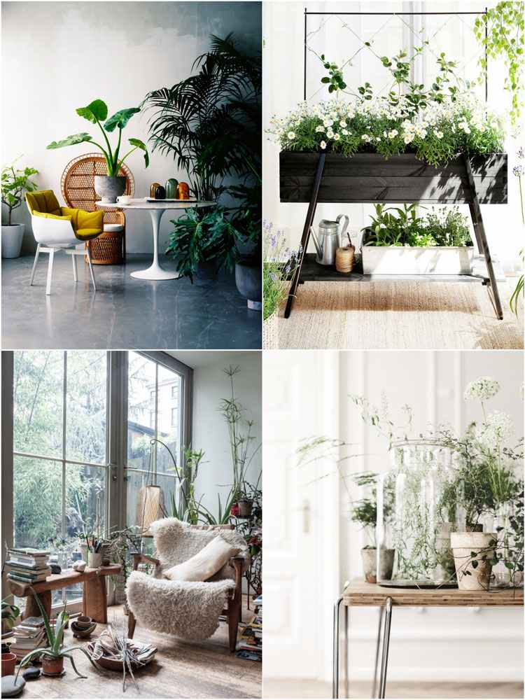 Decoraci n de cuartos 50 ideas creativas para el interior for Ideas para decorar interiores con plantas