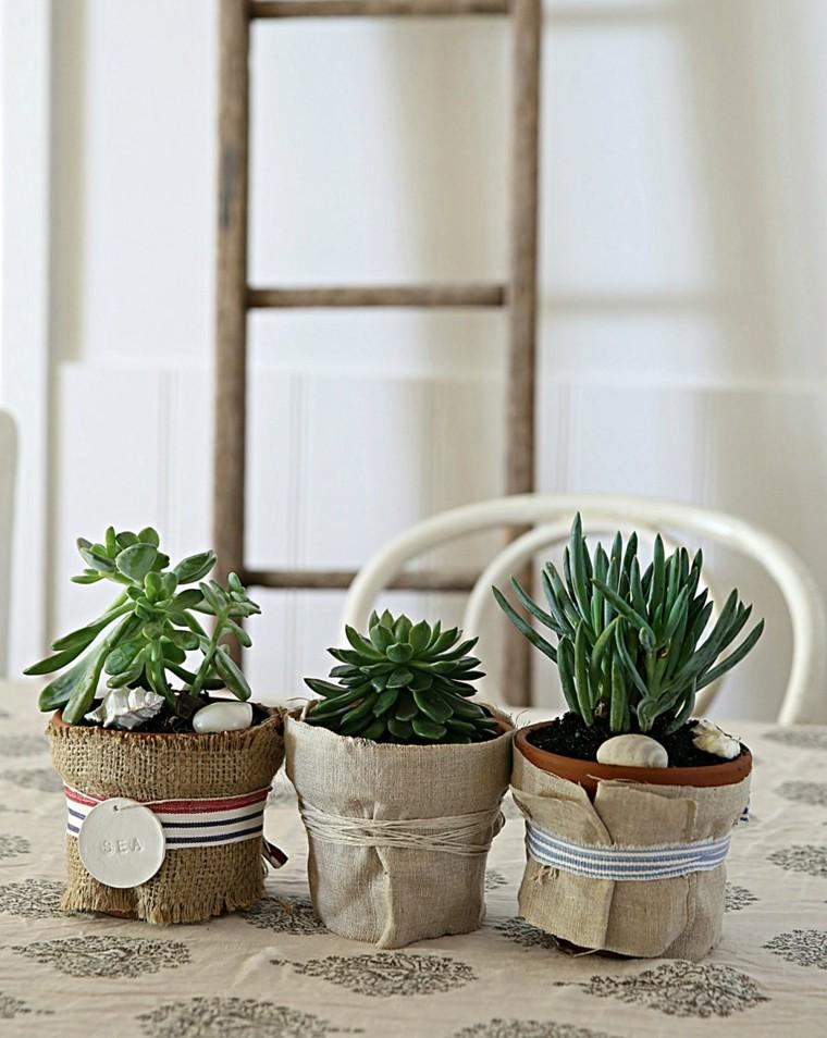 mesa plantas macetas pequeñas rocas