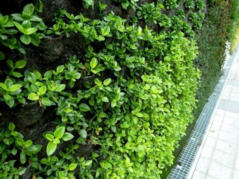 muro paredes vertical verde jardines