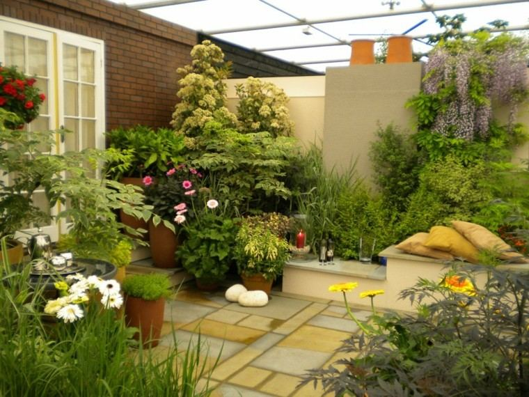 pequeño jardin interior plantas flores