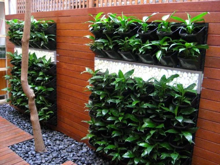 piedras madera verde plantas rocas