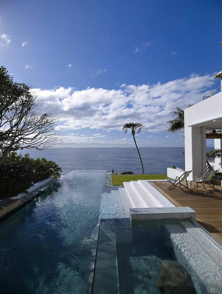 swimming pool design australia folding palm trees