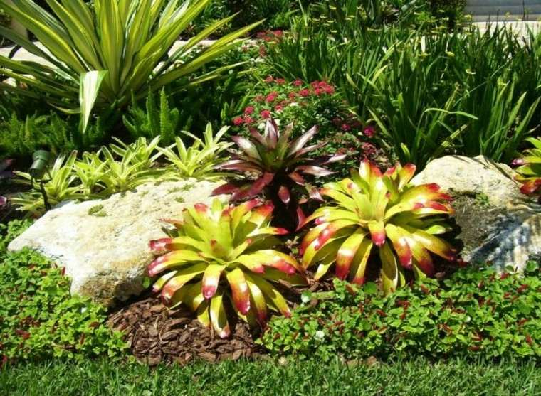 plantas diseño agradable verde llamativo