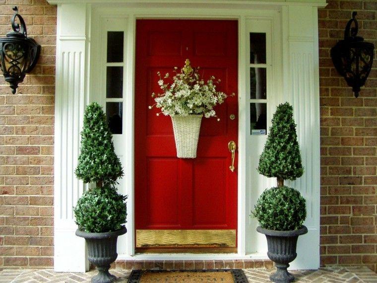 puertas decoracion plantas exterior lamparas