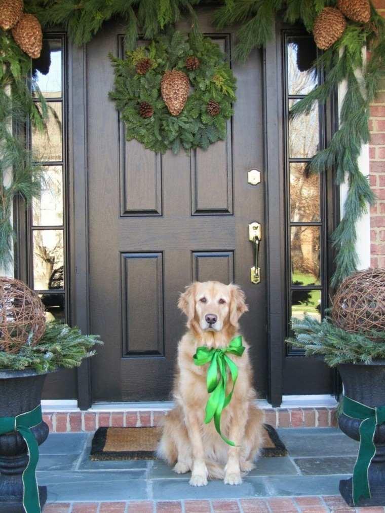 puertas decoracion plantas lazo perro