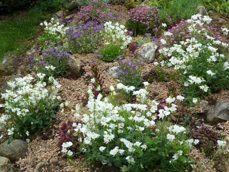 roca jardines monticulo blanco vivo