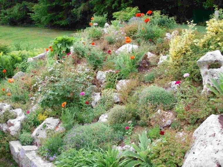 roca jardines monticulo flores naranja