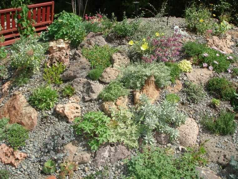roca jardines rojo banco especies pequeñas