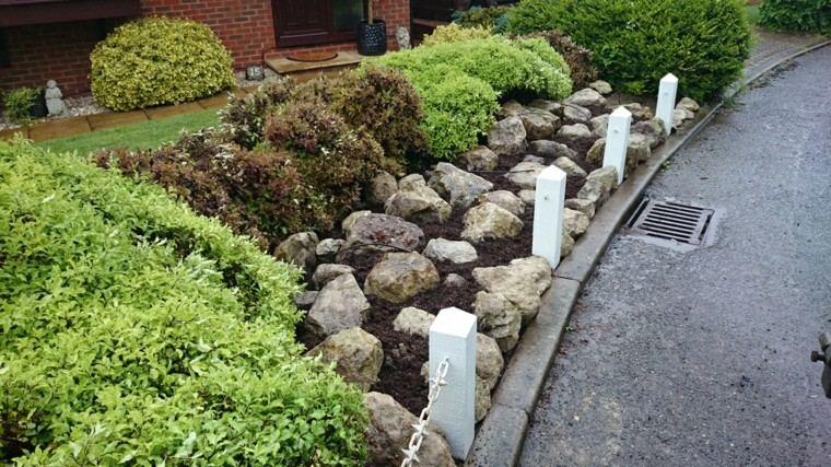 rocas elegante plantas diseño proyecto