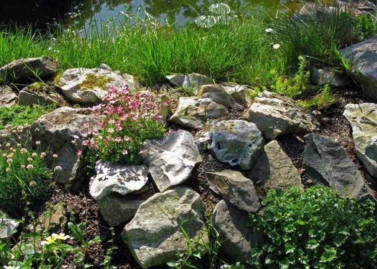 rocas laguna estanque flores plantas