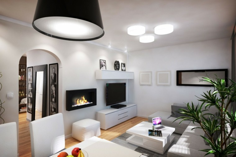 salon moderno pared blanca chimenea planta ideas