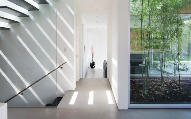 modern living rooms small gardens bamboo