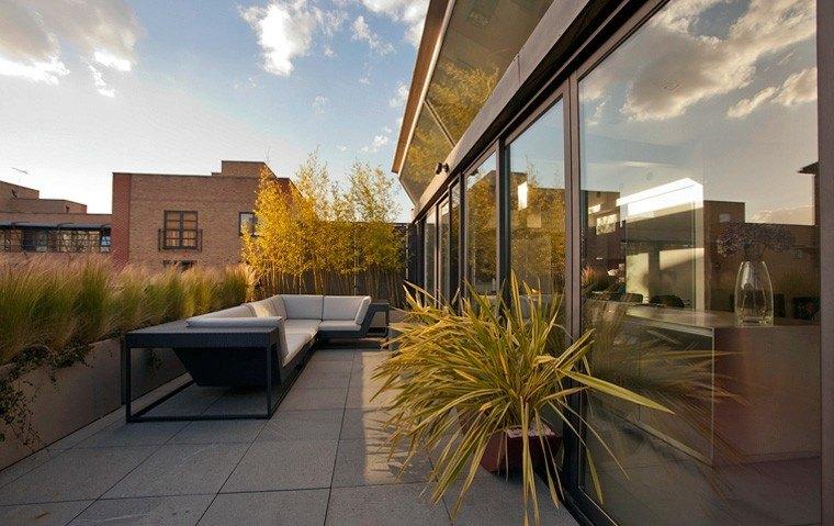 terraza moderna plantas exterior palma
