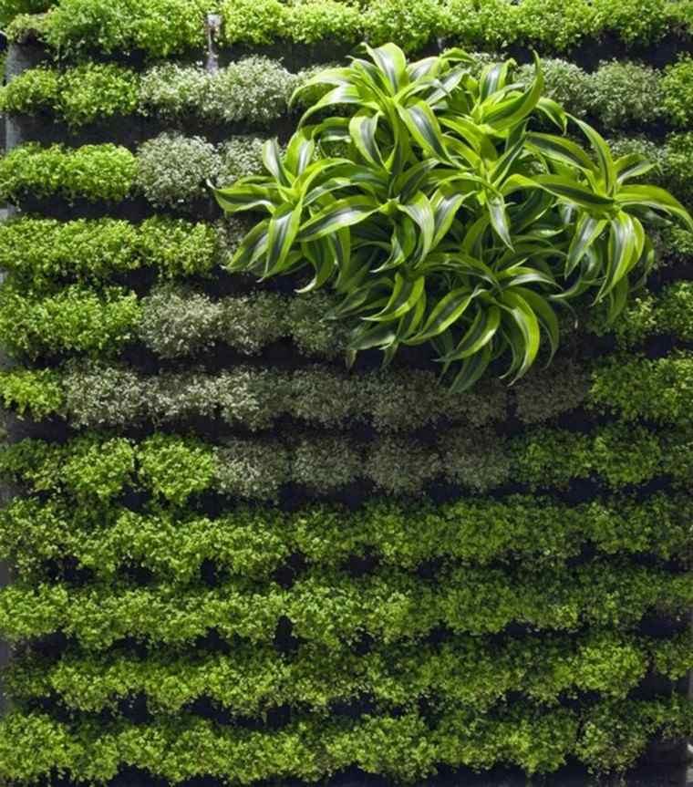 vertical moderno estilo diseño plantas