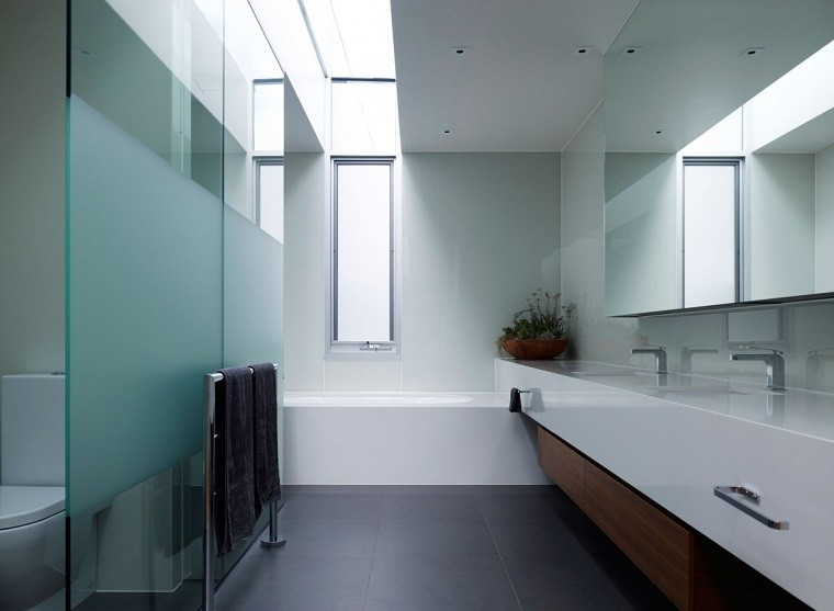 Steve Domoney Architecture decoracion banos modernos maceta ideas
