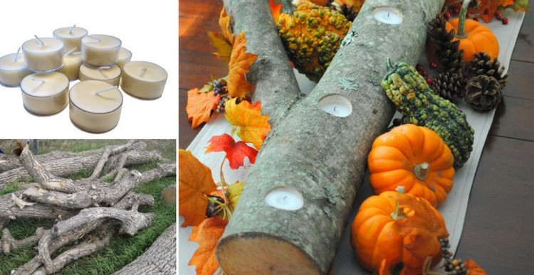 calabazas cesped blanco troncos hojas