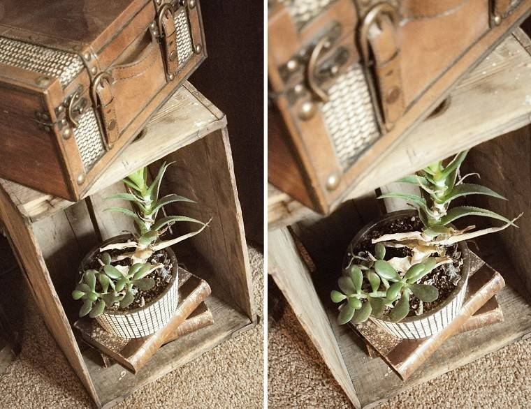 caseta plantas caja madera maleta