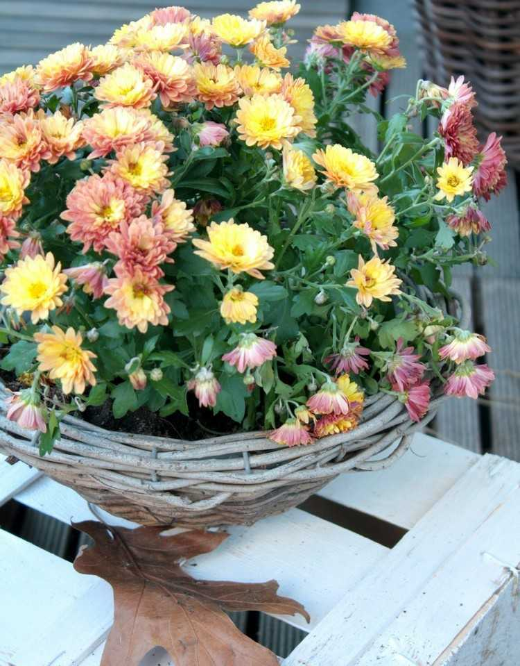 basket yellow flowers balcony autumn