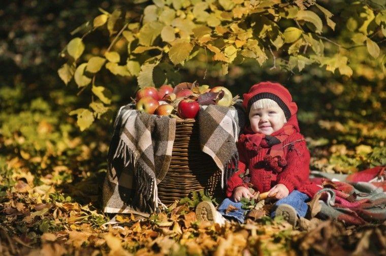 cesta manzanas niña pequeña bosque