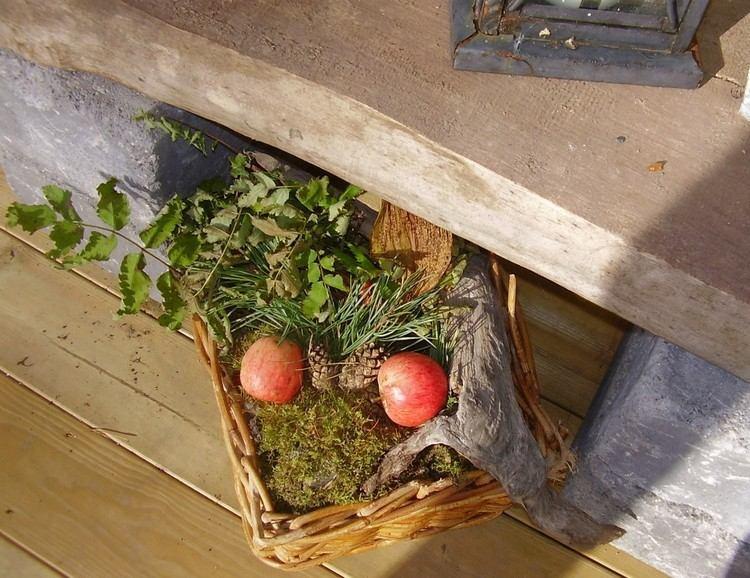 basket moss moss apples deco