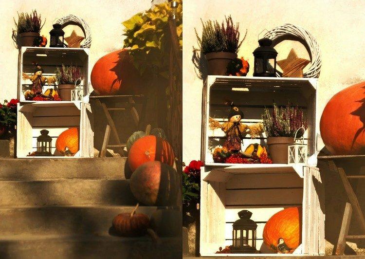 decoration large orange pumpkins