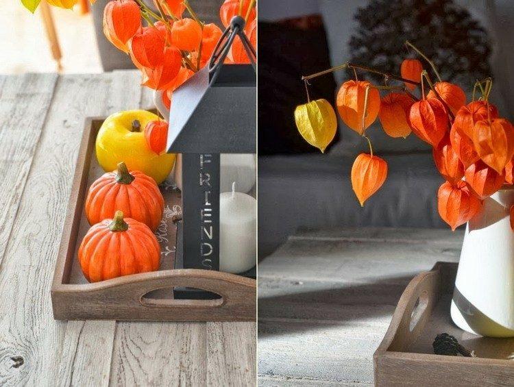 decoración otoño elementos color narAanja