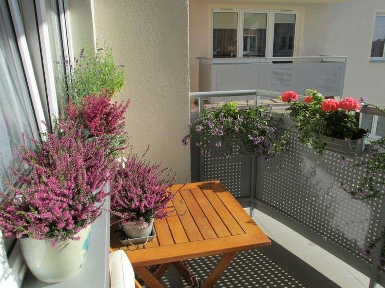 decorate terrace balcony plants