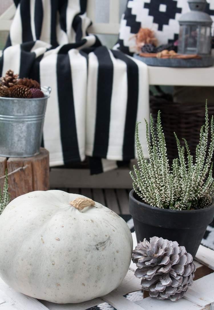decorar balcon calabaza blanca piña