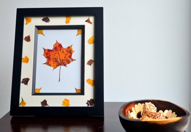 diseño deco objetos otoño
