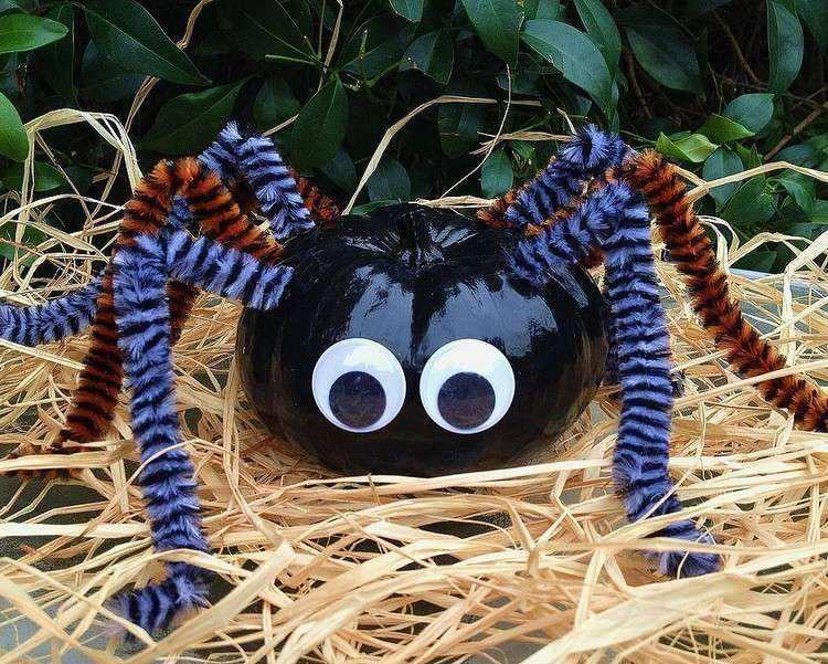 exteriores arañas paja azul colorida