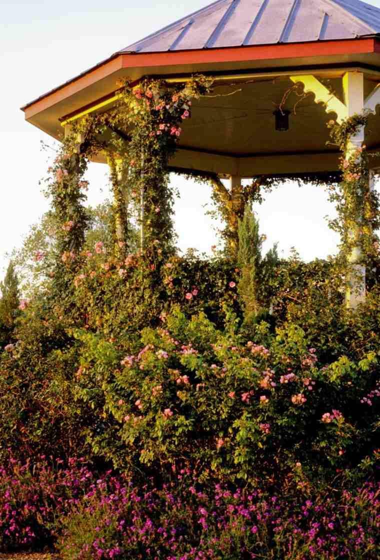 gazebo moderno jardin plantas trepadoras preciosas ideas
