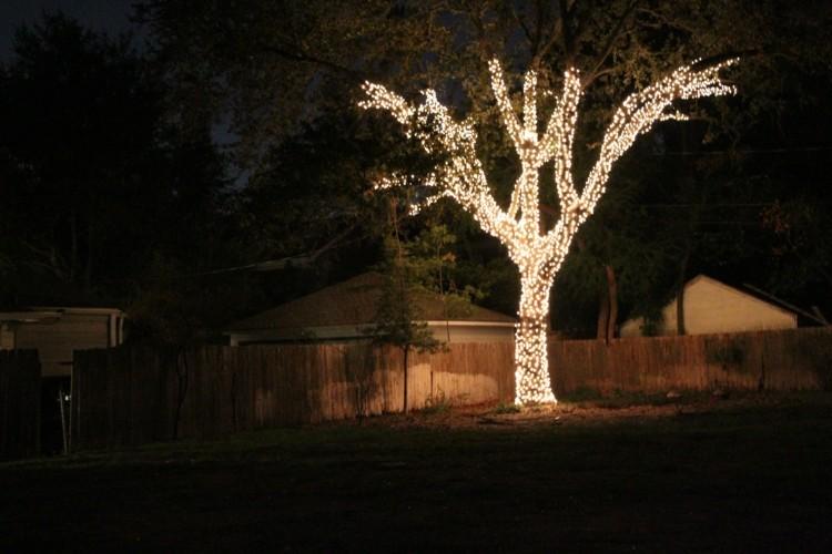 luces de navidad arbol exterior envuelto iluminado ideas