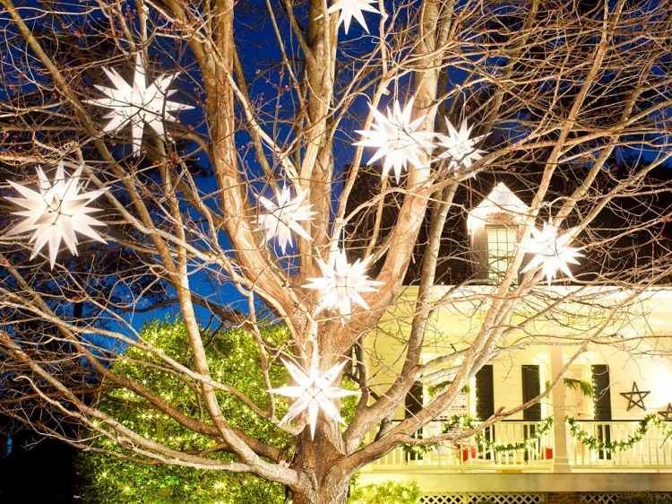 Luces de navidad 50 ideas festivas para decorar la casa for Como decorar un arbol de jardin