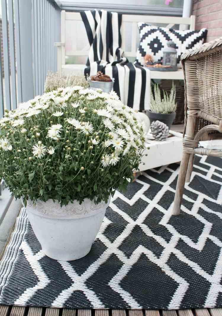 white flower pot white daisies