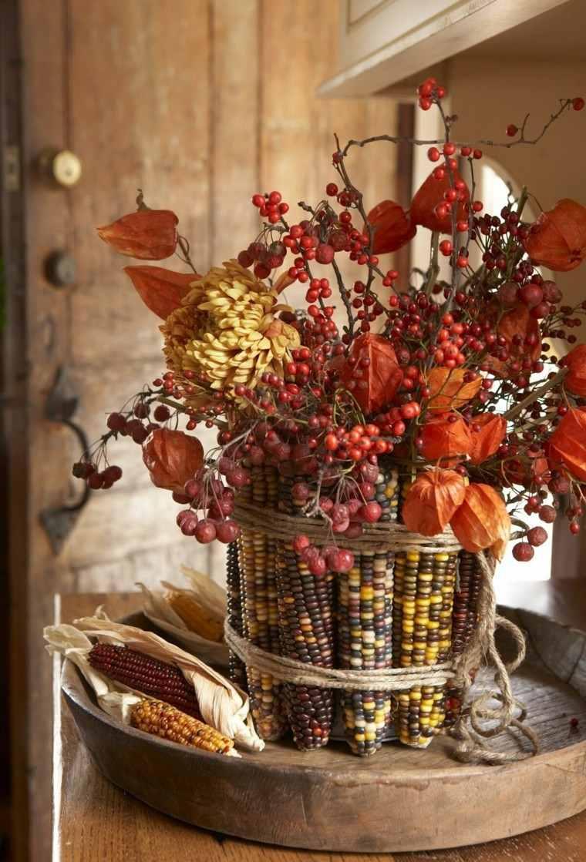 maiz decorado rojo ntenso campo