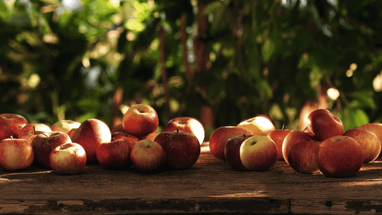 mesa jardin madera manzanas esparcidas