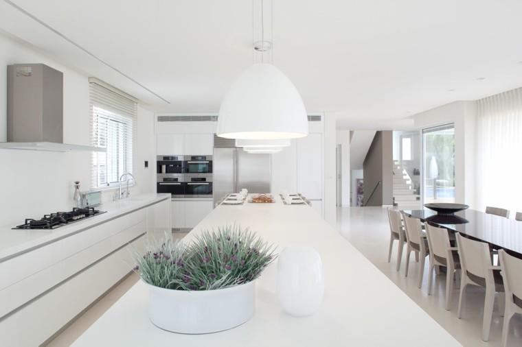 minimalista cocina paredes plantas fresca