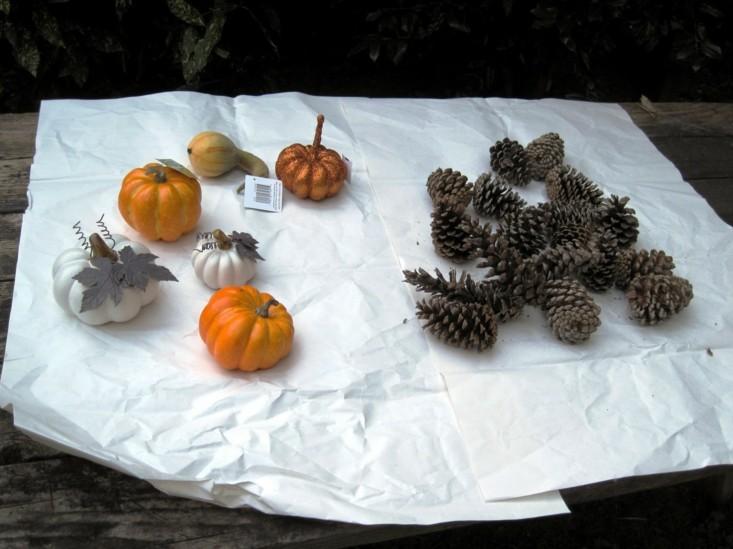 decorar pequeñas calabazas y piñas de pino