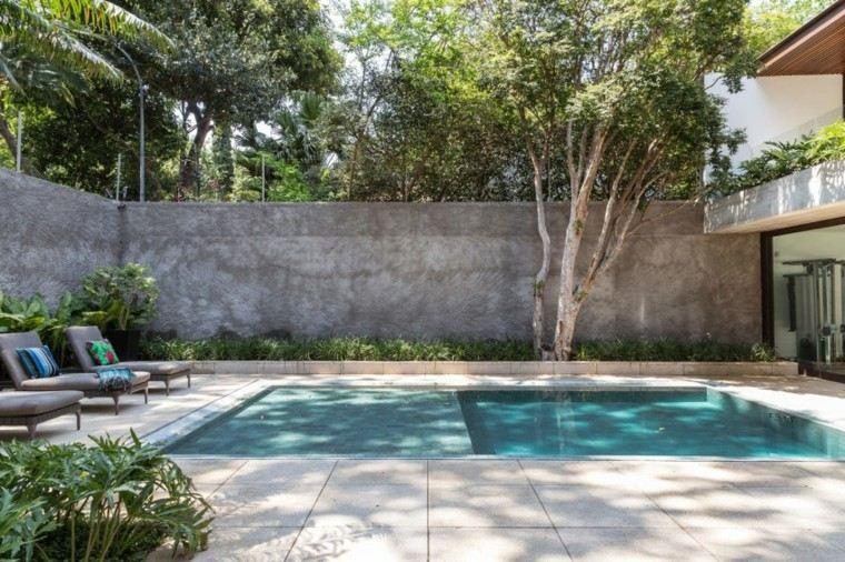 pisicna casa moderna jardin valla alta arbol ideas