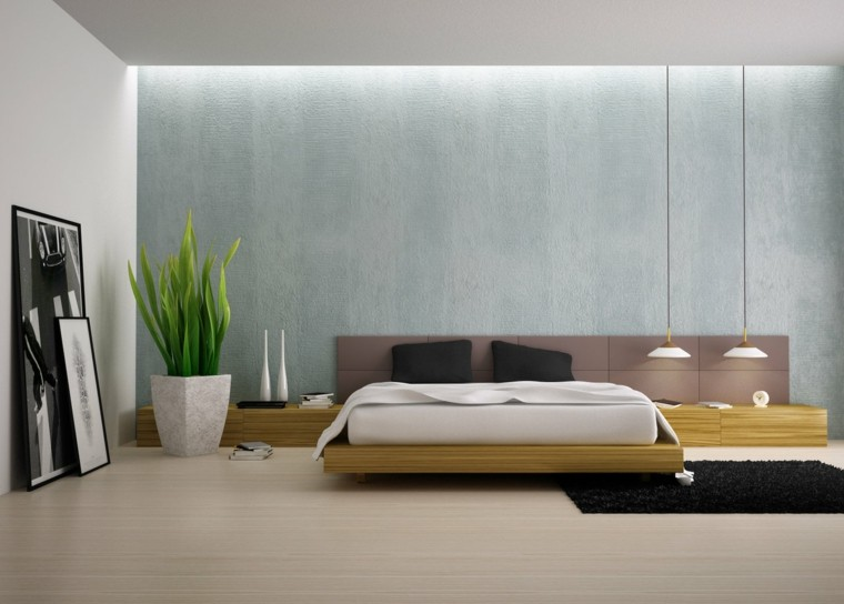 plantas paredes macetas cuadros claro
