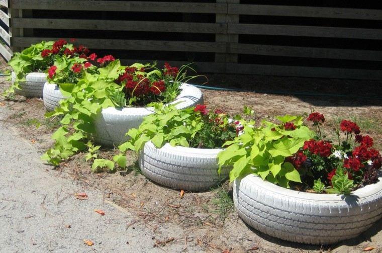 plantas sendero creativo ambiente listones