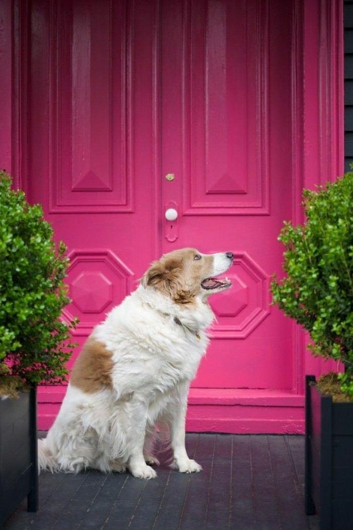 puerta casa pintada color rosa