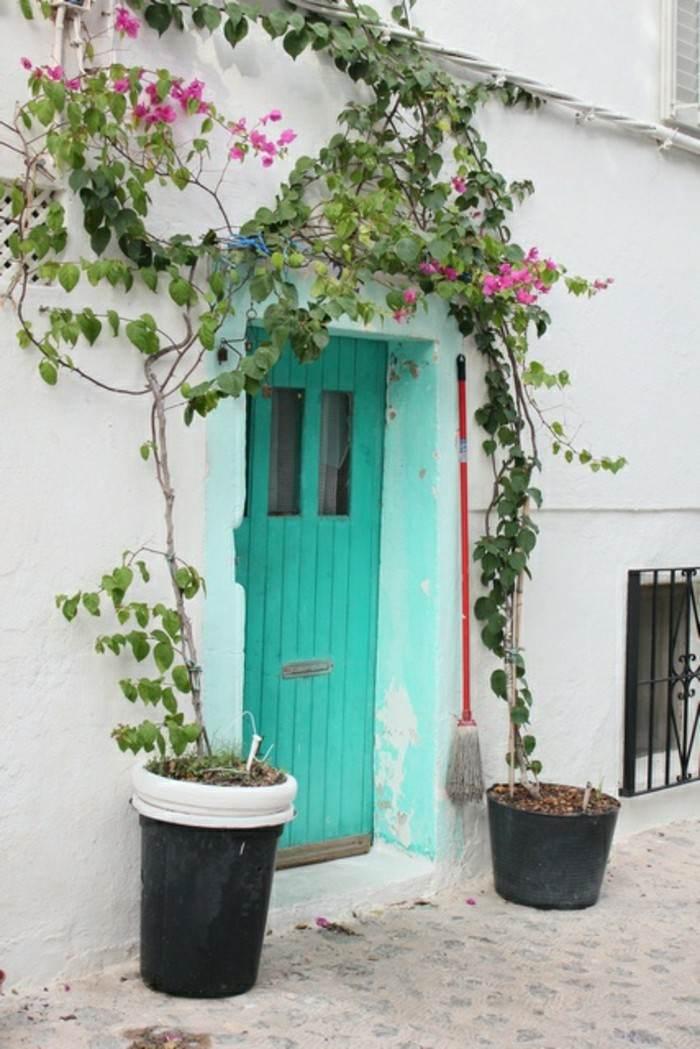 puerta color celeste aguamarina plantas