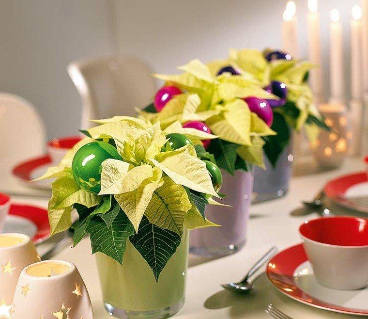 vasos variante verde plantas diy