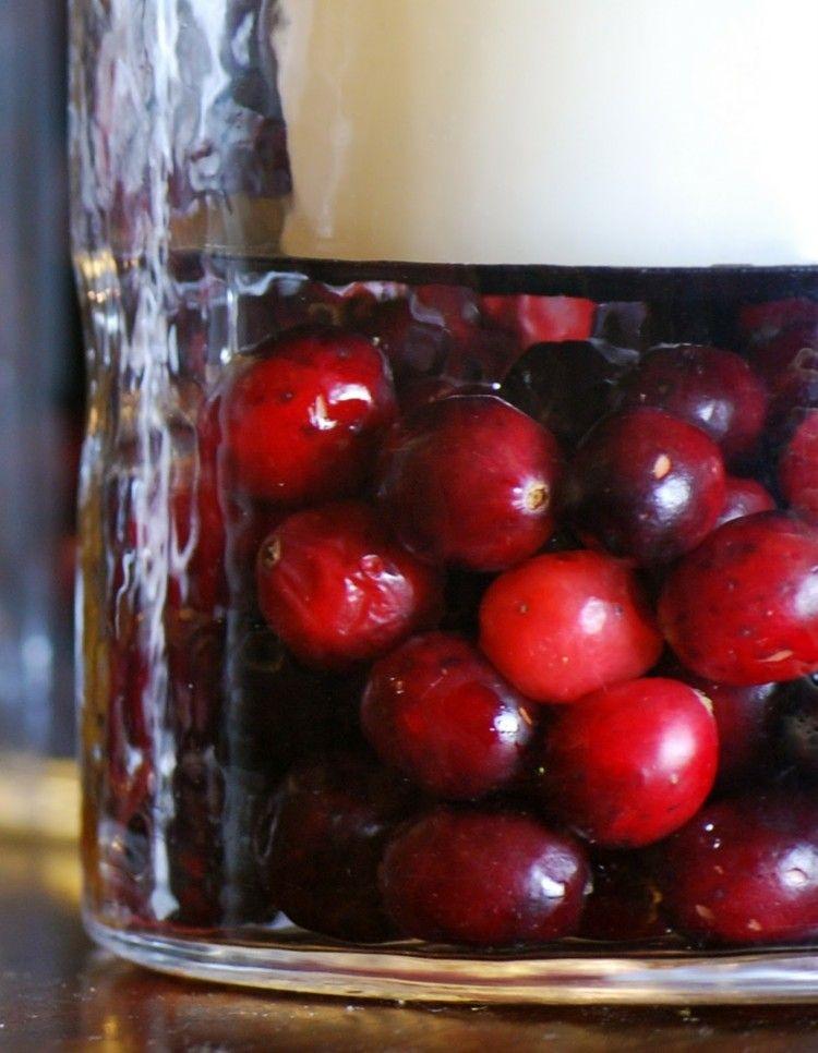 arandanos rojos estilo variante diy diseño