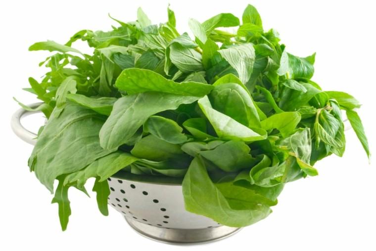 bol foto espinacas verdes frescas