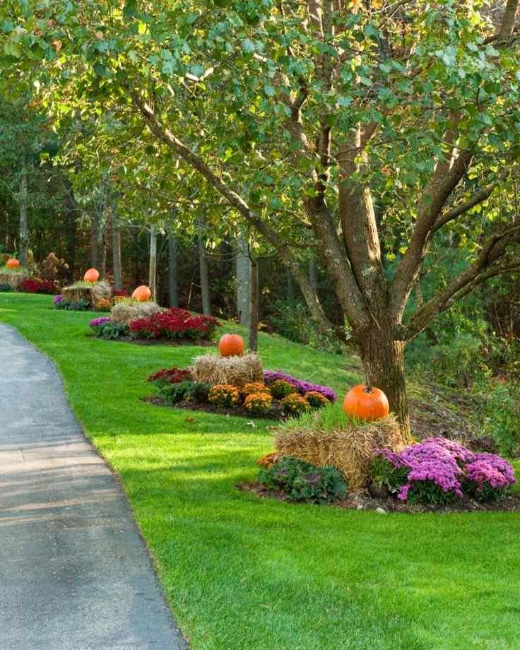 bonita decoración otoño calabazas