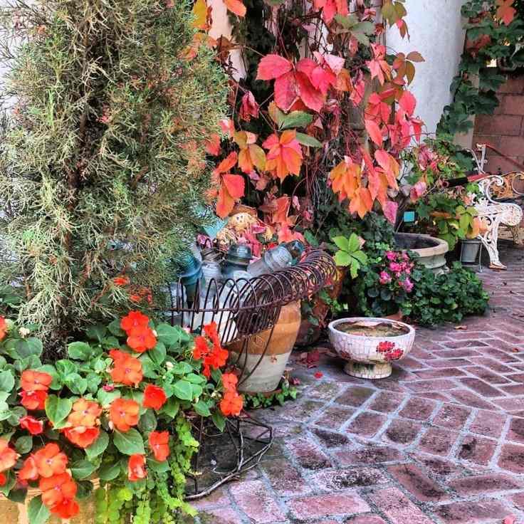 bonita decoracion jardin hojas